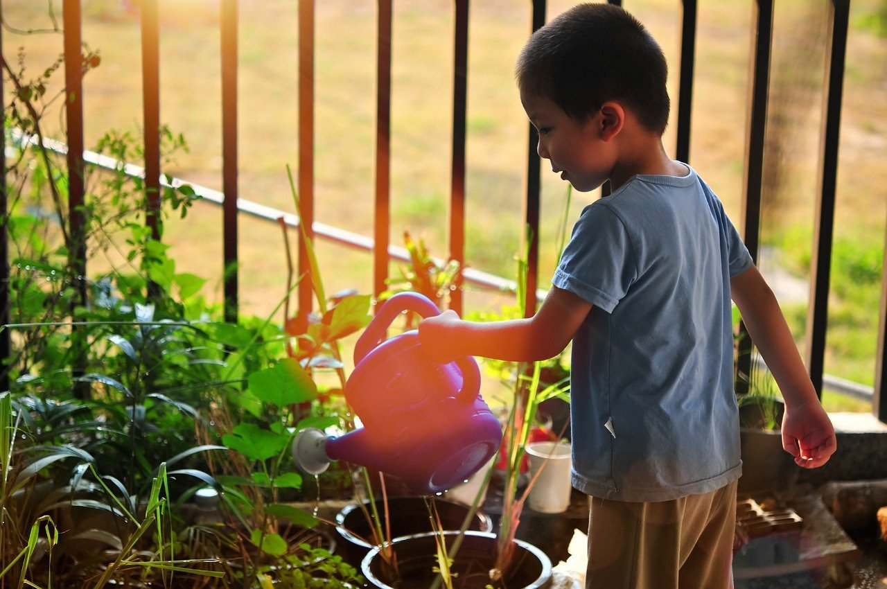 home and garden insights